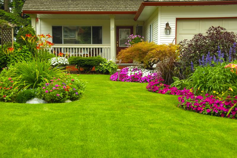 Lawn-and-Garden-Lakewood-CO